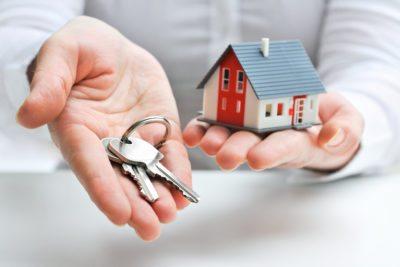 Real estate agent LLC