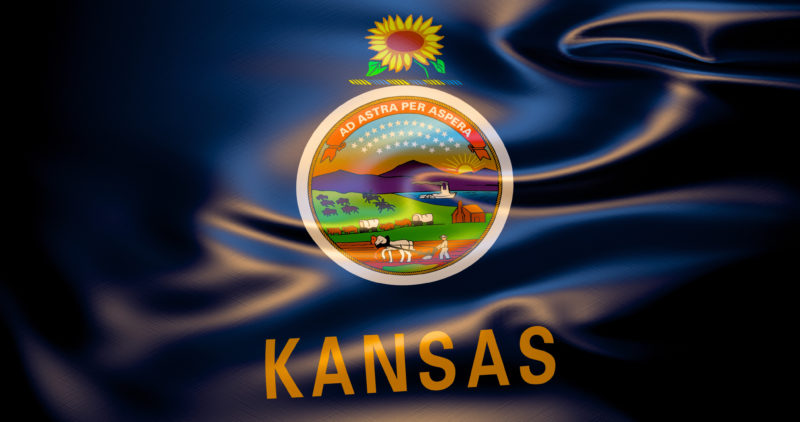 setting up an llc in kansas
